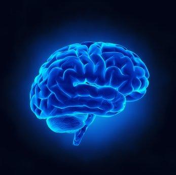 What is Neuroleadership?