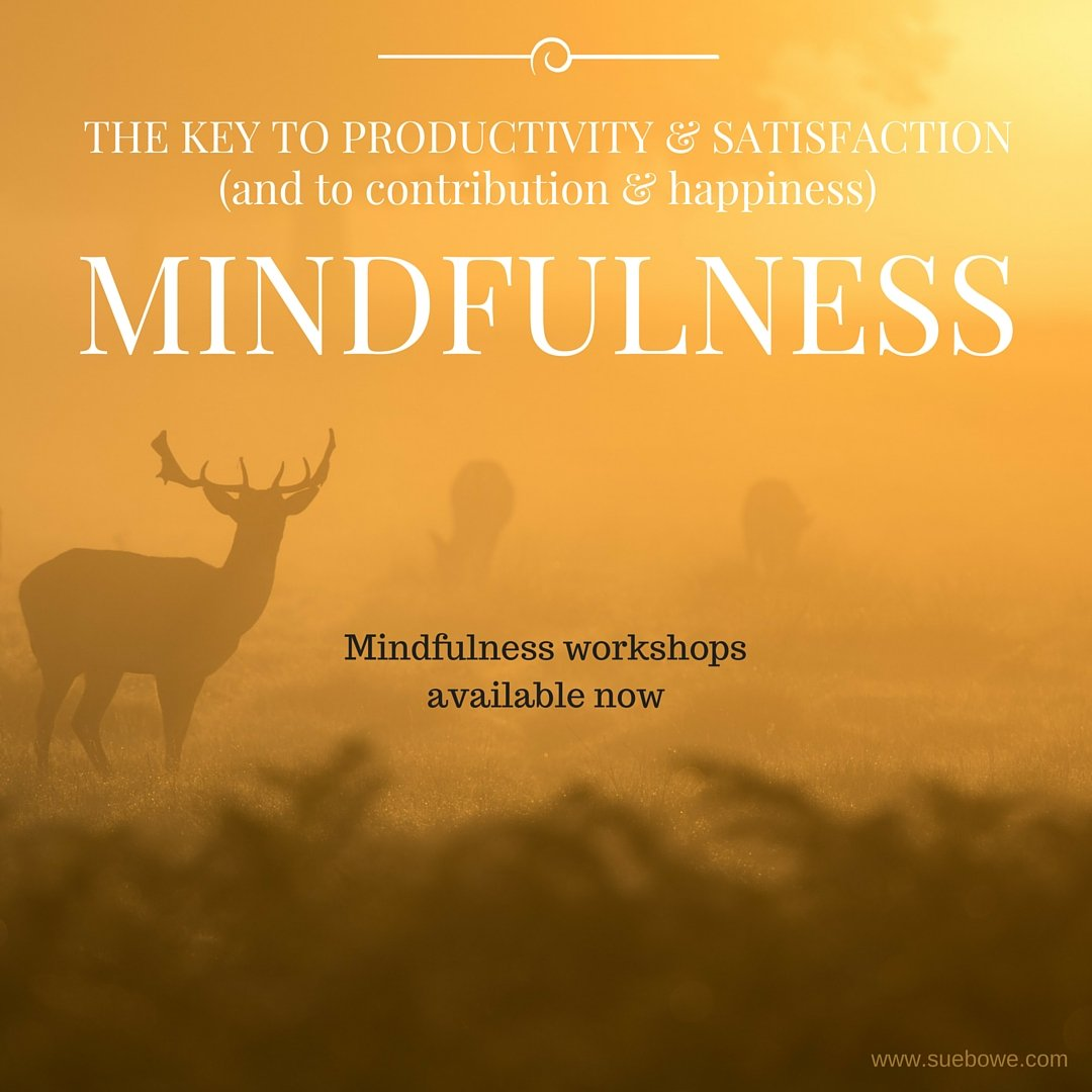 Mindfulness leads to Joy and Productivity