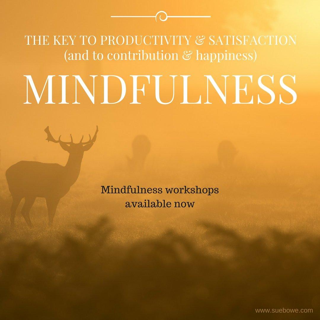 Mindfulness leads to Joy and Productivity