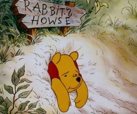 stuck winnie the pooh