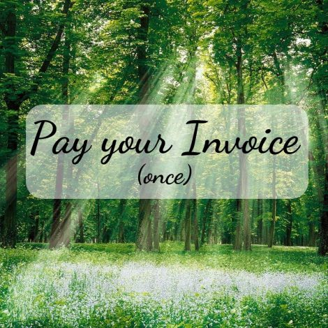pay your invoice one time