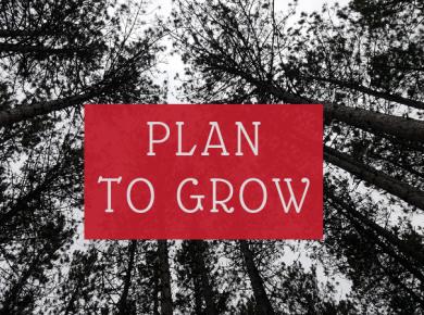 plan to grow