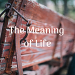 The Meaning of Life is Up to You