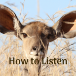 How to Listen with Emotional Mastery